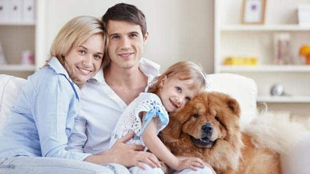 Wills & Trusts dog-young-family Direct Wills Bispham